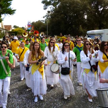 mimosa-festival