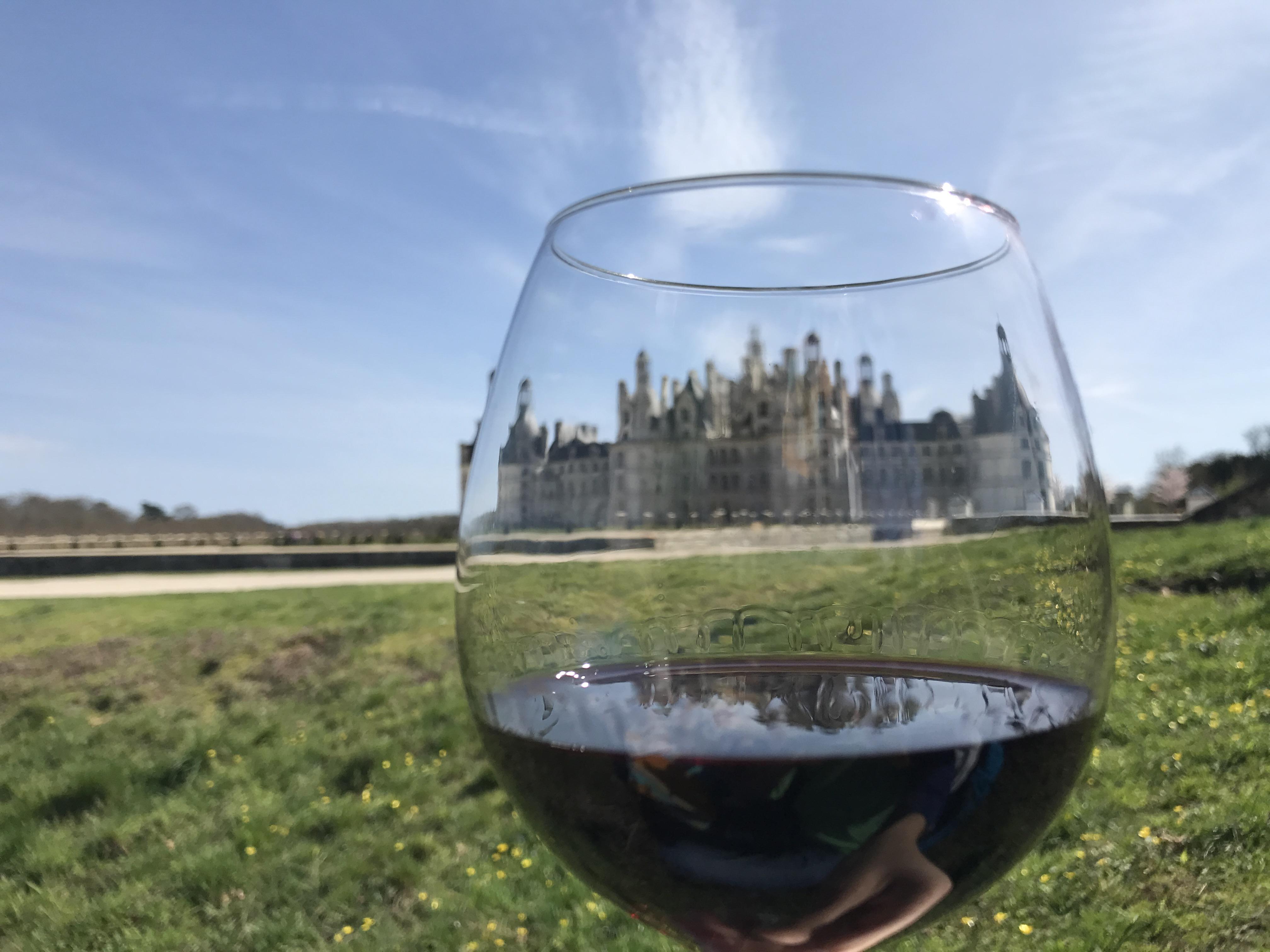 picnic-wine-glass