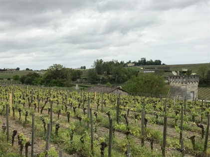 saint-emilion-france-bordeaux